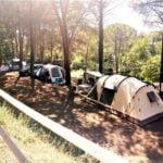 Toscana Camping Tuscany Italy Leisure Holiday Park