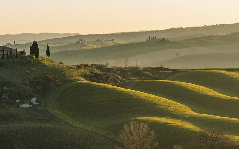 toscana-green-countryside-sunset